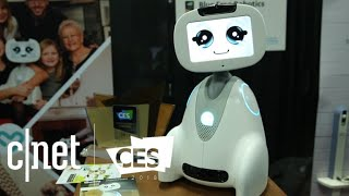Meet Blue Frog Robotics Buddy: A smiling security bot at CES 2018