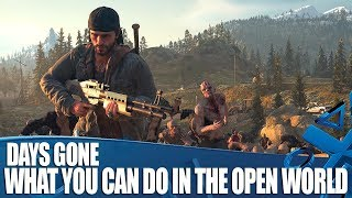 Days Gone - What Will You Be Doing In The Open World?