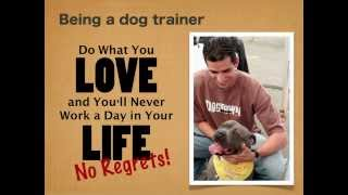 Switching to a Career in Dog Training