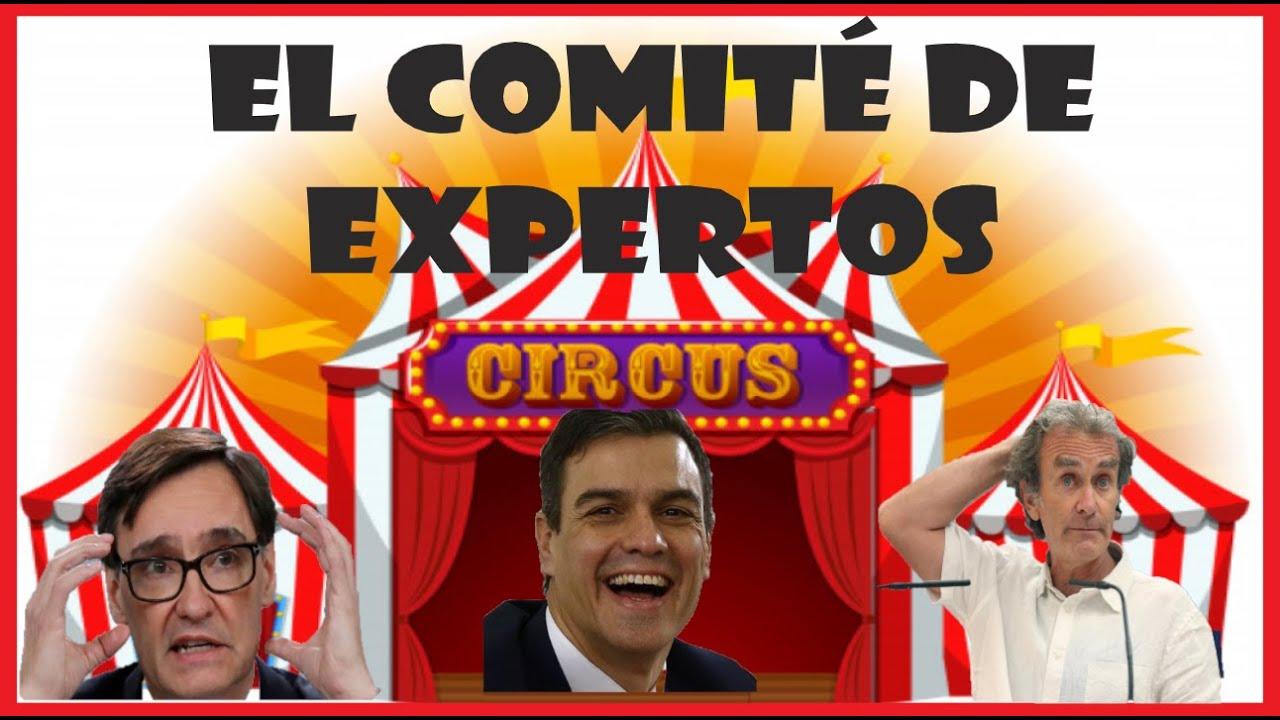 EL COMITÉ DE EXPERTOS