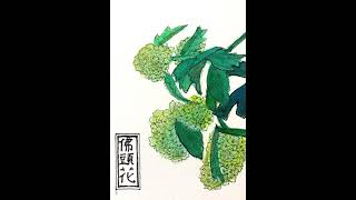 조선시대 궁궐의 식물 ~ 3-13. 불두화