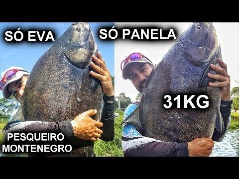 PESQUEIRO MONTENEGRO - SÓ PANELA NO EVA / TAMBACU DE 31KG