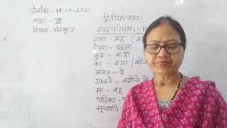 Class VI Sanskrit 19 04 2021 by Dr Meera Vishwakarma