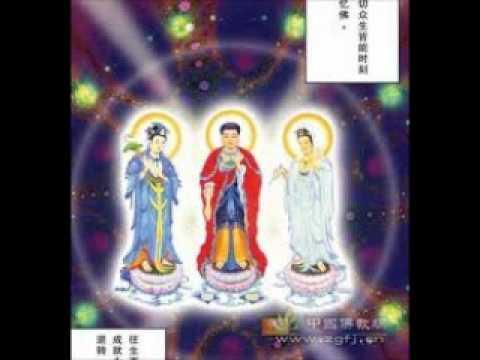 Tiểu sử hòa thượng Thích Thiền Tâm Phần 2