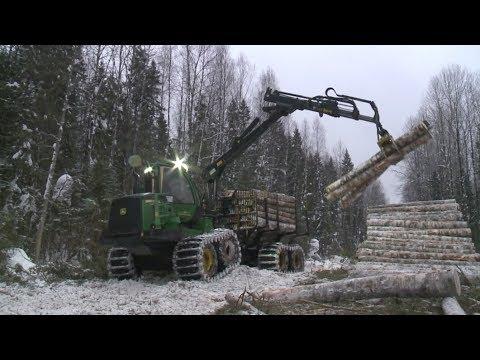 Лес: предприятие «Вожега-Лес»