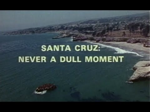 SANTA CRUZ Never A Dull Moment (Vintage)