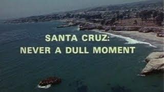 SANTA CRUZ Never A Dull Moment (Vintage)
