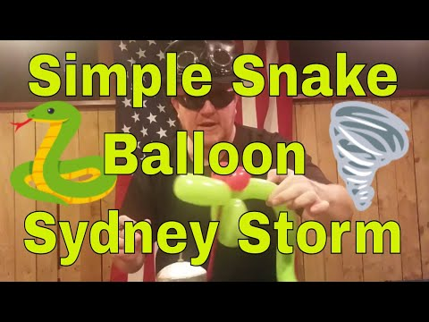 Super Simple Stegosaurus Balloon with Sydney Storm Easy Balloon Animal Tutorial from YouTube · Duration:  4 minutes 44 seconds