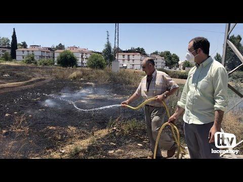 VÍDEO: Un incendio arrasa una zona de pastos en el entorno de El Zarpazo y se acerca a las viviendas