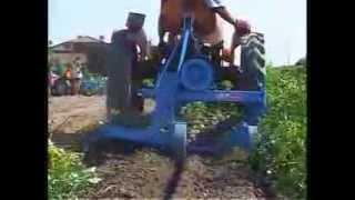 Repeat youtube video Masina recoltat cartofi,cu gratar