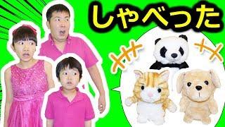 ★ぬいぐるみペットがしゃべった!ミステリードラマ★stuffed doll speaks★ thumbnail