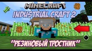 Резиновый тростник мод Industrial Craft2 Как вырастить резиновый тростник в minecraft