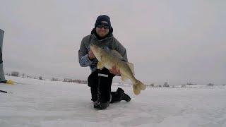Ice Fishing South Dakota for Huge Walleyes on Tipups