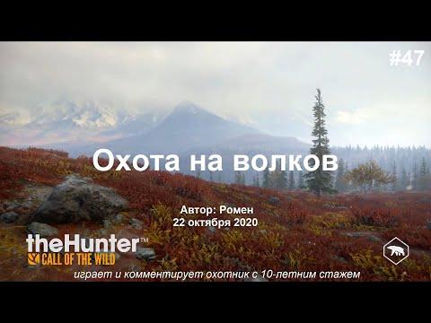 Охота на волков в The Hunter Call of the Wild (Yukon Valley)