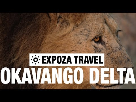 Okavango Delta Vacation Travel Video Guide
