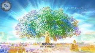 Câu Chuyện Phật Giáo hay nhất Đời Sống Cõi Tây Phương Cực Lạc phần 1 - Truyện Ngắn Đêm Khuya