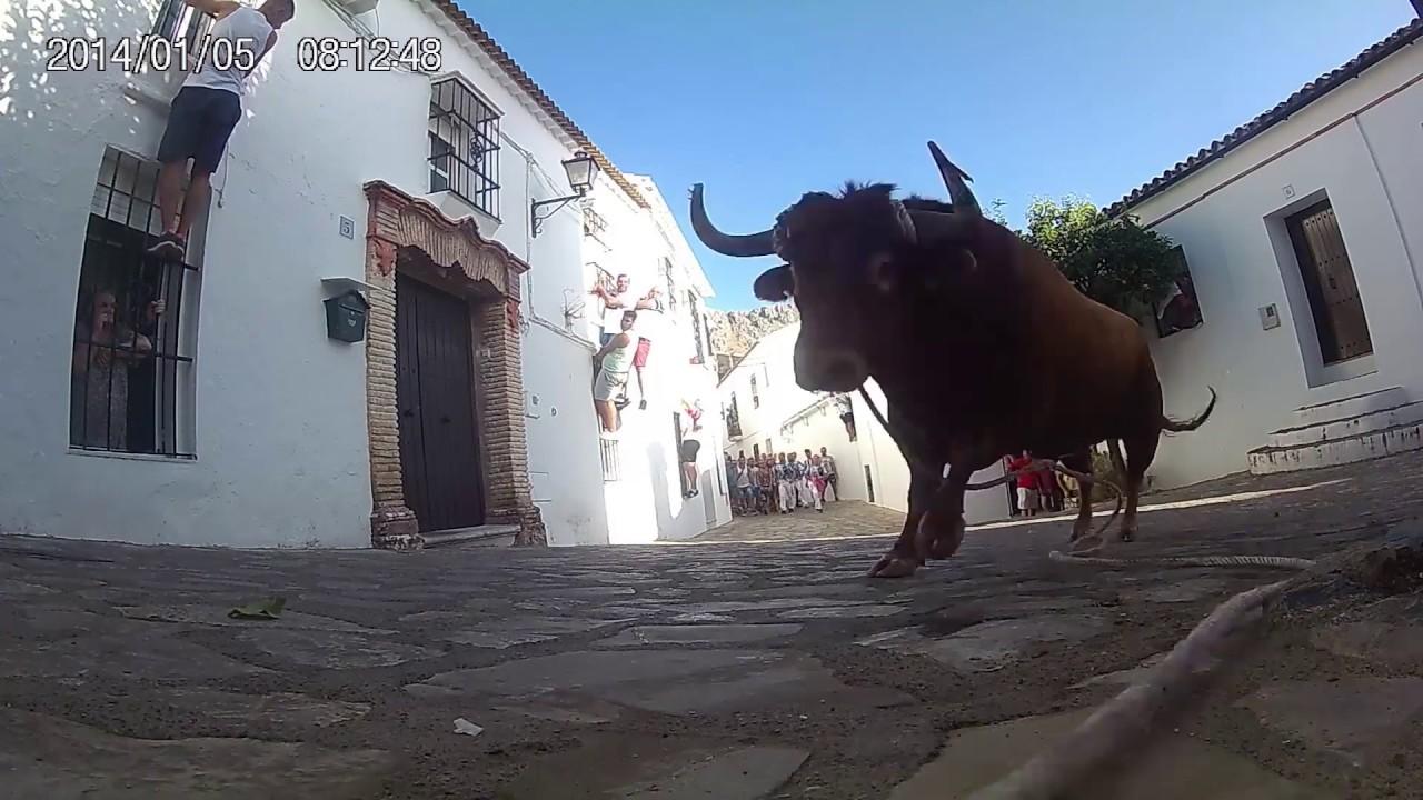 """Resultado de imagen de benaocaz toro"""""""