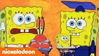 SpongeBob SquarePants | Belajar dari SpongeBob 2 | Nickelodeon Bahasa