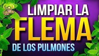 Como Limpiar Los Pulmones - Como Eliminar Las Flemas De Los Pulmones