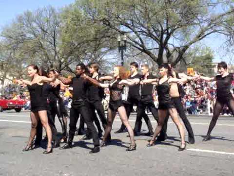 Chicago Tour Cherry Blossom Parade - Washington DC