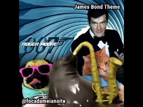 Foca da meia-noite - James Bond Theme
