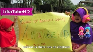 Funny Video - Kids reaction Elephant at Zoo - funny reaction saw elephants first time @Lifiatubehd