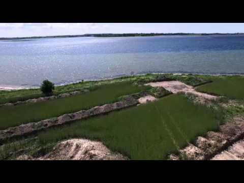 Dronefilm fra de arkæologiske udgravninger ved Roskilde Fjord