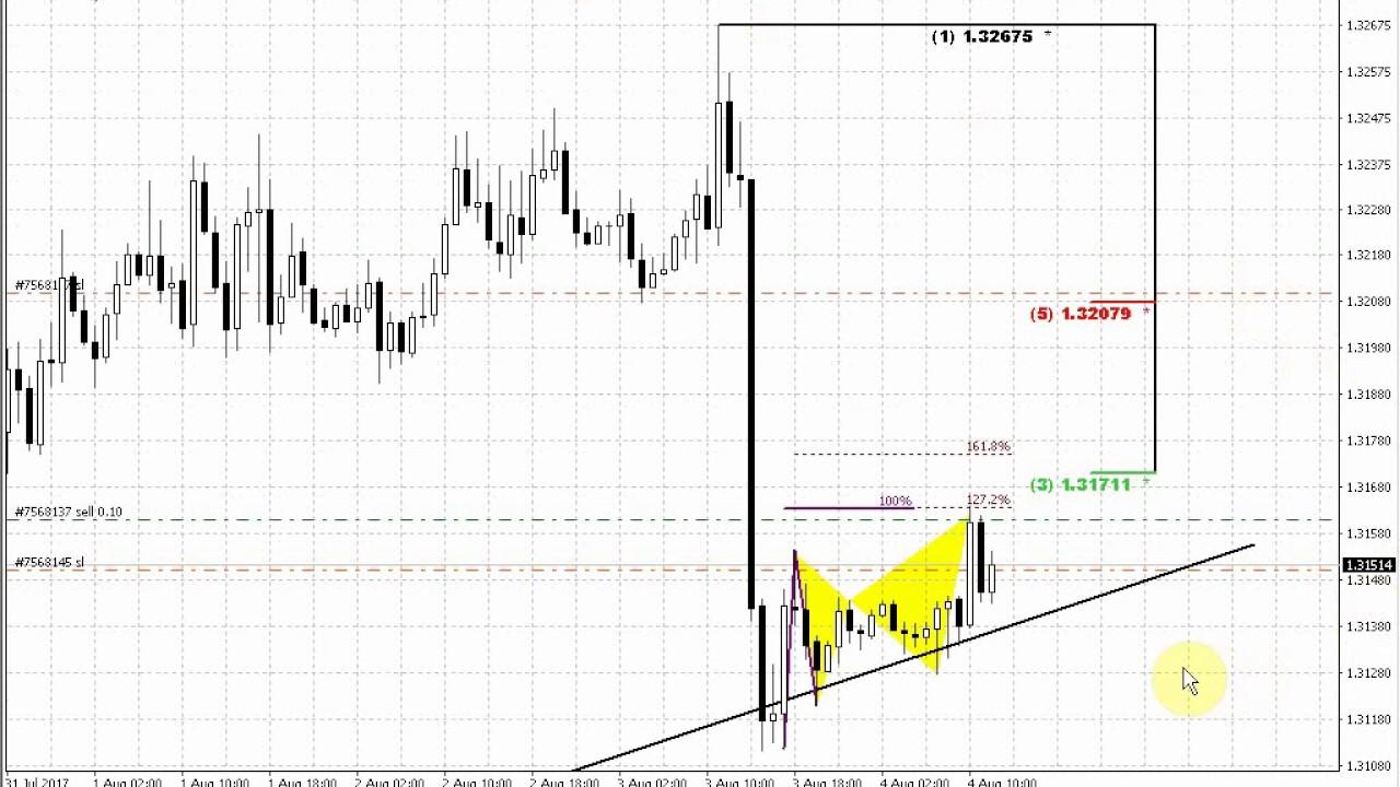 Forex peace army tradingview