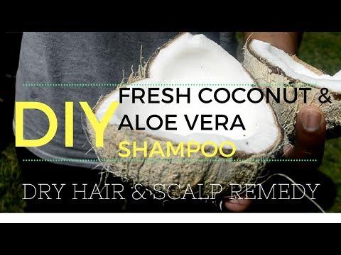 DIY Shampoo | Fresh Homemade Coconut Cream & Oil, and Aloe Vera Juice