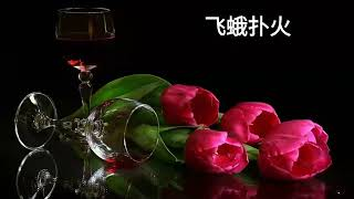 Fei E Pu Huo - Ban Dun Xiong Di - Inti Terjemahan & Lirik - 飞蛾扑火