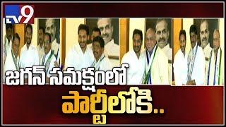 TDP MP Thota Narasimham qiut TDP Joining in YCP - TV9