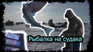 """Рискованная рыбалка на Судака """"Море""""  Все копают машины(("""