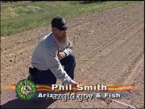 Creating Marsh Habitat In Powers Butte