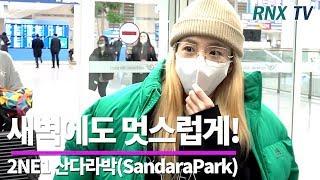 2NE1 산다라박(SandaraPark), 이른 새벽에도 멋스럽게! 2NE1 SandaraPark arriv…