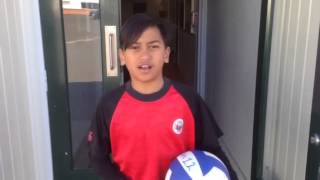 Romatt volley