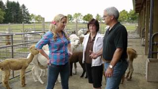 MERGE S2 E6 - Alpacas at Marquam Hill Ranch