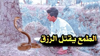 الطمع يقتل الرزق   فلم هادف    الجزء الثاني شوفو شصار... #يوميات_سلوم