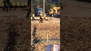 World Logging Championships 2016 World Record - Tree Felling