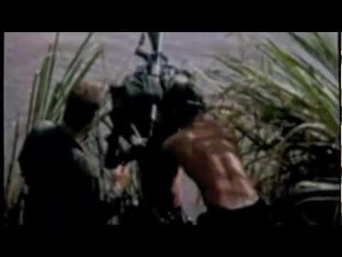 173rd Airborne Brigade (SEP) Vietnam