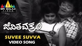Jeevitha Chakram Video Songs | Suvee Suvva Video Song | NTR, Vanisri, Sharada  | Sri Balaji Video