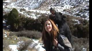 Mail Order Bride Carrying Wild Pigs in NZ