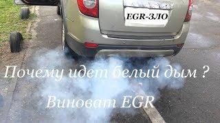 Из трубы идет белый дым, возможные причины, виной клапан EGR.