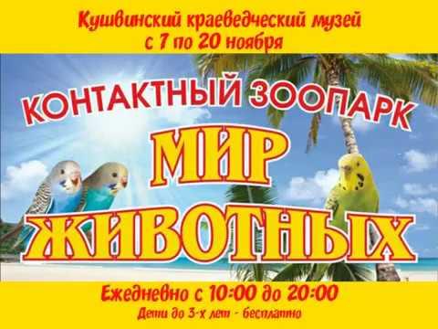 """Контактный зоопарк """"Мир животных"""" в Кушве"""