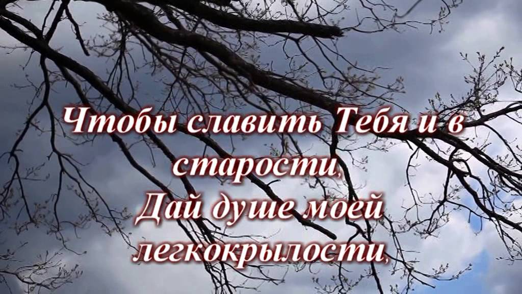 nauchi-menya-bozhe-mudrosti-video