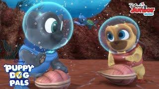 Sea Turtle Song Music Video | Puppy Dog Pals | Disney Junior