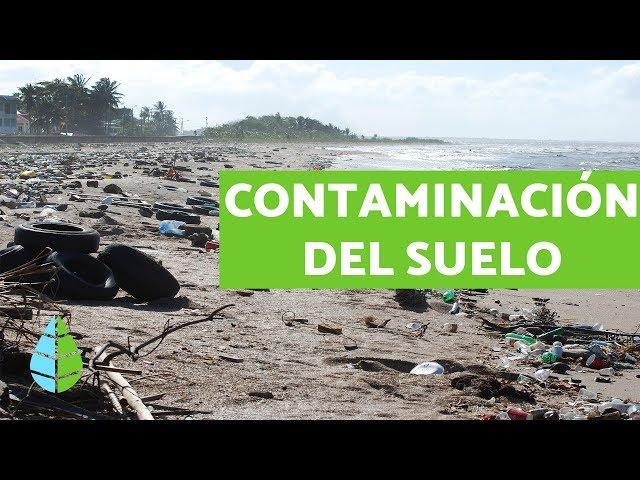 Contaminación Del Suelo Causas Consecuencias Y Soluciones