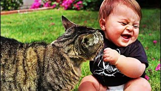 funny cats and babies playing together......