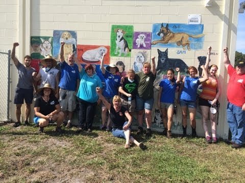 Animal Coalition Tampa & Big Cat Rescue