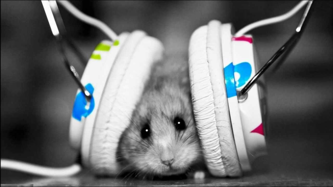 Techno Electro House Trance Music Download Awesome Cool HD Windows Mac Linux Wallpapers
