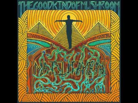 The Good Kind of Mushroom - Matsutaken (Full Album 2017) Mp3